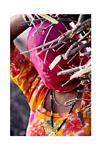 India (Woman carrying sticks)