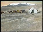 Saser Pass Camp