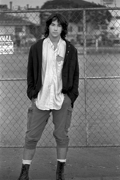 Keanu on the Fence